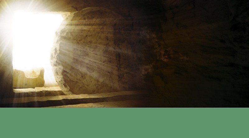 Chemin despérance 800x445 - Vivez un parcours d'Esperance proposé par 7 évêques dont Mgr Christory